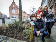 Word peter of meter van een stukje stadsgroen in Brugge