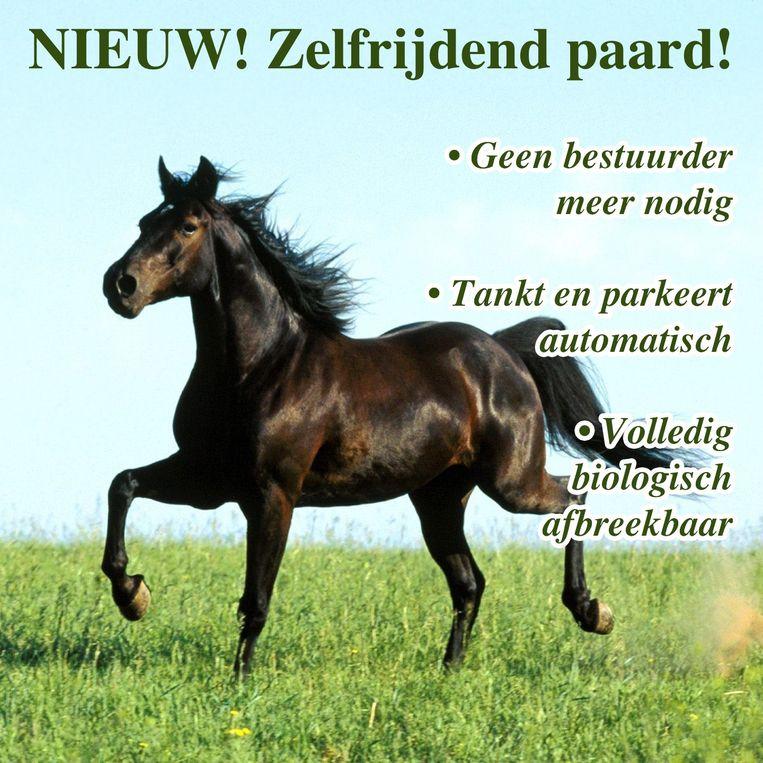 null Beeld Tim F. Van der Mensbrugghe