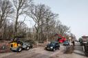 De bomenkap aan de Zeddamseweg in 's-Heerenberg is in volle gang.