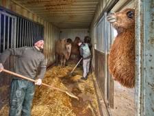 Dierenpark Zie-ZOO Uden zorgt goed voor dier en mens