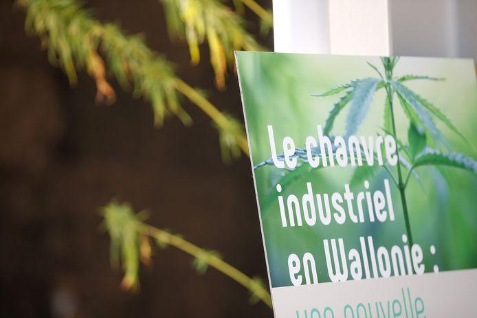 Industriële hennep in Wallonië