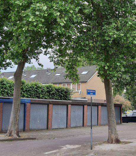 SGP in Rijssen wil alternatief plan voor kap van bomen: 'Voorrang geven aan groen'