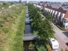 Tien bruggetjes (250.000 euro) eindigen in een Veenendaalse geluidswal: 'Een duur visplekje'