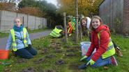 Kinderen planten 8.000 krokusbollen