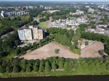 Broedseizoen in volle gang, maar langs Maas-Waalkanaal wordt een bos gesloopt: 'Deze lompheid verwacht je niet'