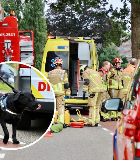 Hond bleef bij bazin in auto na ongeval De Lutte: 'Hij slaapt nog steeds op de jas van mijn vrouw'