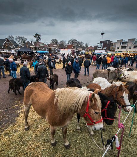 Eerste Goorse Wintermarkt met traditionele paardenmarkt op zaterdag 18 december