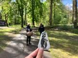 Honderden happy stones beschilderd door Burgers' Zoo