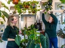 Op donderdag is Yvon (33) tandarts, op vrijdag verkoopt ze bijzondere planten
