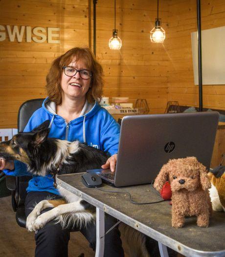 Hondenschool uit Warnsveld luidt noodklok: veel 'coronapups' worden nu niet goed opgevoed