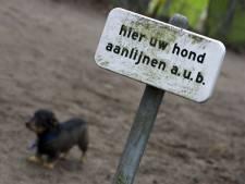 Hondenbezitters, manegehouders en gemeente gaan in gesprek over honden in Hania's Polder