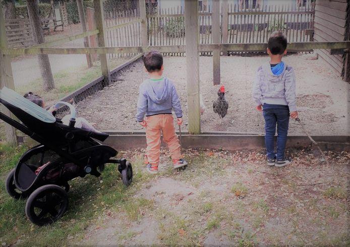 De Simba-kinderen en hun begeleiders trokken naar vakantiepark Hengelhoef.