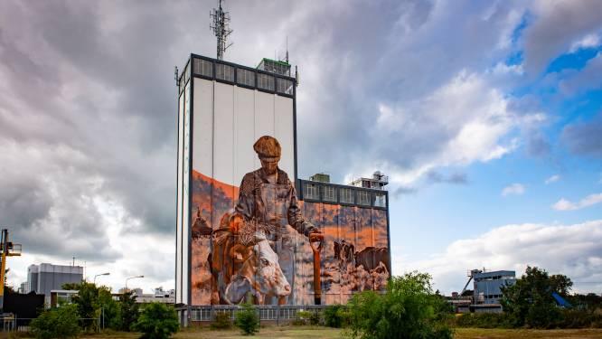 Indrukwekkende muurschildering van Miel (37) op Lochemse silo: 'Het is zo ongelooflijk groot'