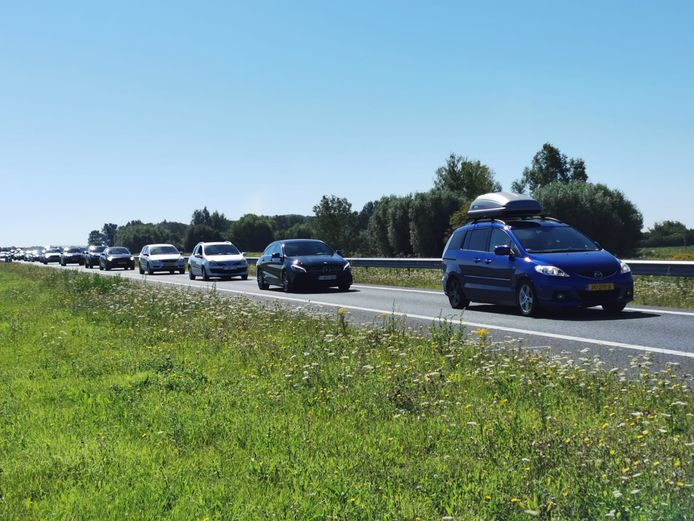 Eind juli 2020. File op de N61 in Zeeuws-Vlaanderen.