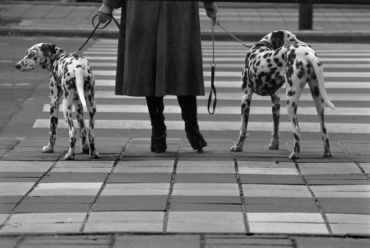 Amsterdam, 1978. Beeld Eddy Posthuma de Boer