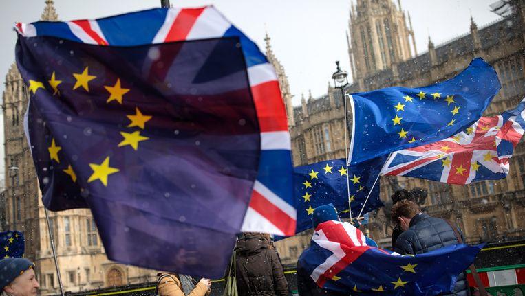 Demonstranten protesteren tegen de Brexit bij het Britse parlement, 26 februari Beeld null