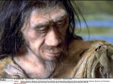 """""""Homo erectus n'était pas seul"""""""