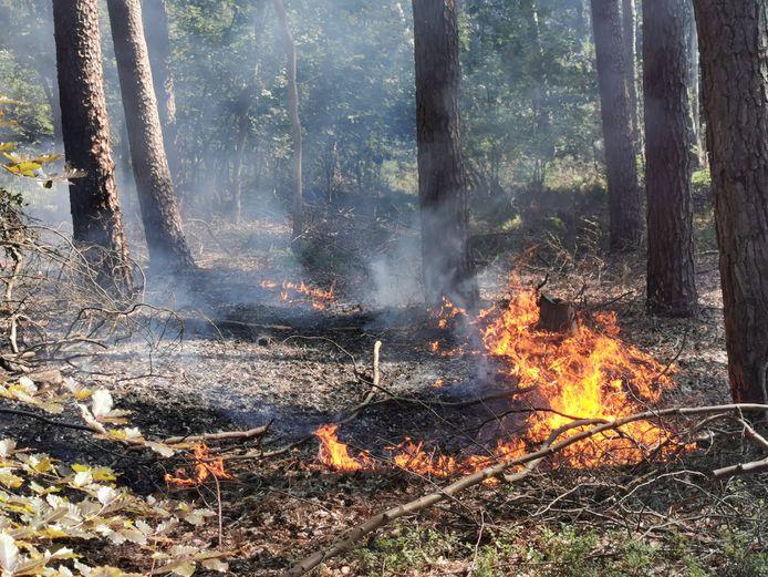 De vlammen sloegen de lucht in.