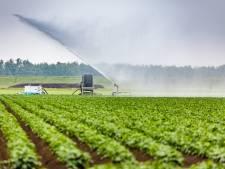 De lente was lang niet nat genoeg: waterschap grijpt in om waterpeil te beschermen