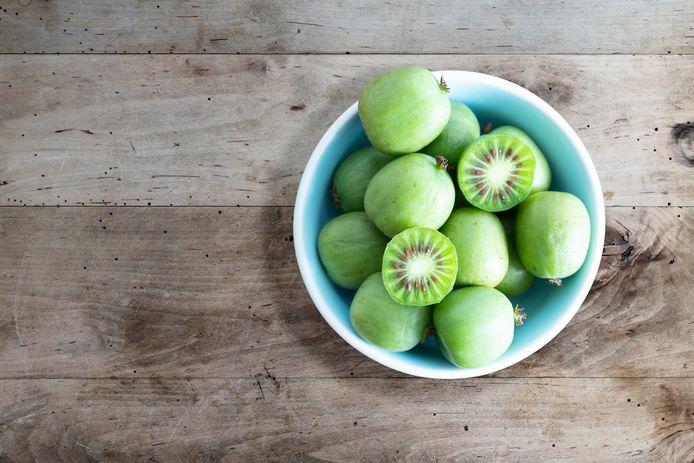 Actinidia arguta kiwibes
