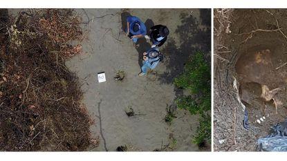 Zeker vijftien lichamen gevonden in verborgen graven in Mexico