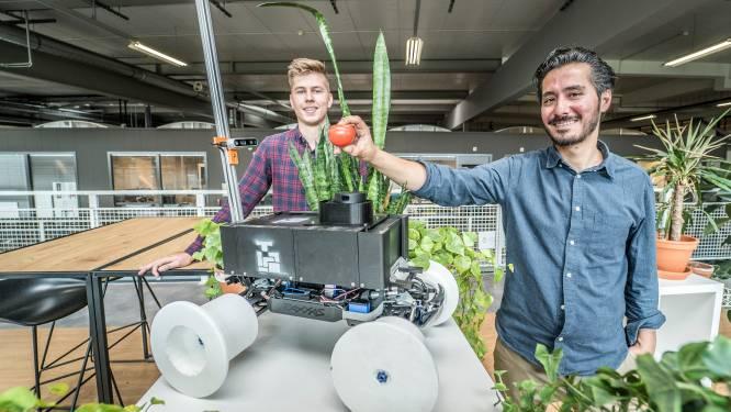 Deze robotdokter zoekt naar zieke planten in een kas: 'Zo kun je groot deel van oogst op tijd redden'