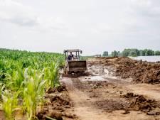 Overstromingen bezorgen boeren enorme schade, maar rampsteun blijft uit: 'Eigenlijk onbegrijpelijk'