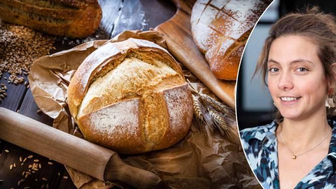 """Hoe (on)gezond is brood nu echt? """"Tarwe wordt onterecht beschouwd als een dik- en een ziekmaker"""""""