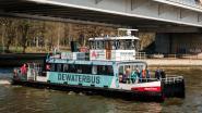 De Waterbus houdt vanaf zomer halt in Lillo en Liefkenshoek