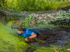 Hattem omarmt Obstacle Run