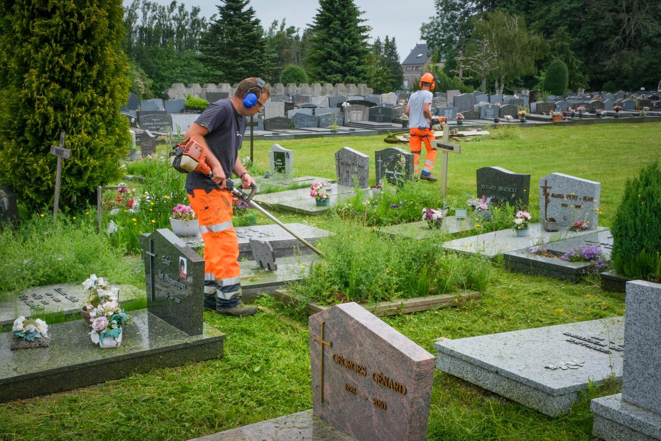 Grimbergse groendienst neemt kerkhof in Strombeek onder handen.