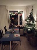 Familie Van der Zanden is trots op de sfeervolle kerstboom en kerstverlichting.