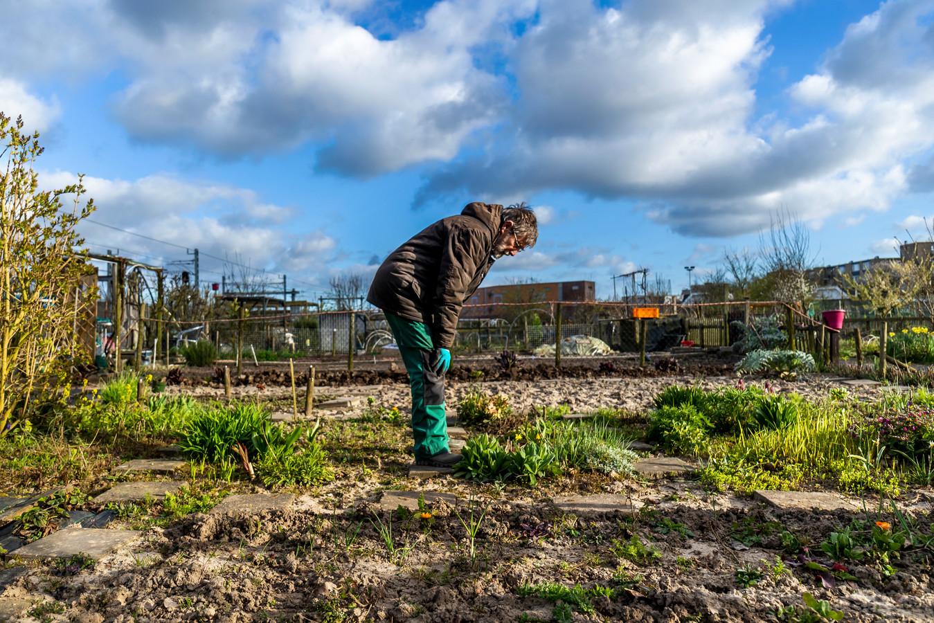José Verouden (77) staat elke zaterdag om 6.15 naast haar bed om in de tuin te werken