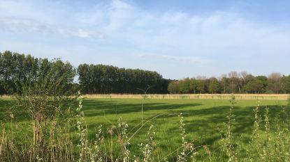 'Heldenbos' groot succes: initiatiefnemers op zoek naar 5 hectare extra