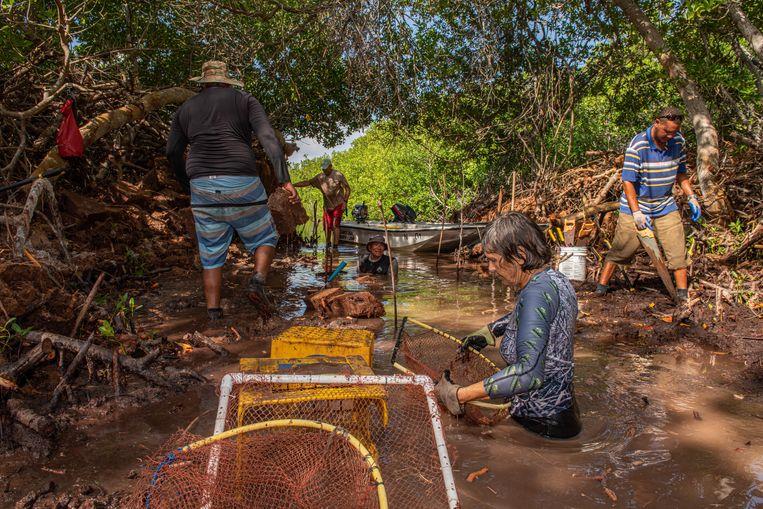 Wetenschappers aan het werk. Met behulp van zagen, schoffels, manden en netten proberen ze de 'kanalen' op te schonen, zodat het water de mangrove beter kan bereiken.  Beeld Lorenzo Mittiga/INSTITUTE