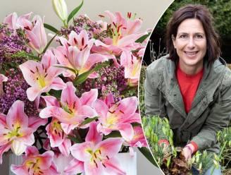 """""""Laat dure onecologische rozen links liggen"""": onze tuinexperte toon de mooiste alternatieven voor Valentijn"""