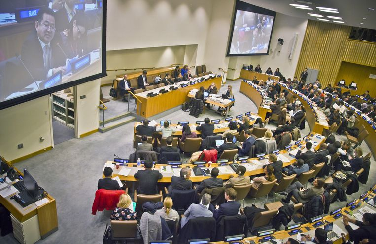 De Algemene Vergadering van de Verenigde Naties. Beeld ap