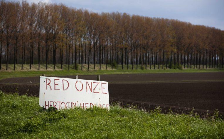 Archiefbeeld van een protestbord tegen het onder water zetten van de Hedwigepolder in Nederland. Beeld ANP XTRA