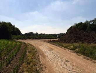 """Archeologische vondsten gedaan op de Bruul, waar gemeente sportterreinen wil aanleggen: """"De resten dateren mogelijk al uit de Romeinse periode"""""""