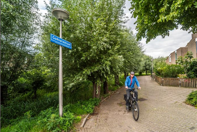 De Guevarastraat in Delft.