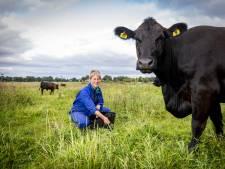Gemma is dolgelukkig tussen het vee van Harry's Farm in Enter: 'Hier wil ik nooit meer weg'