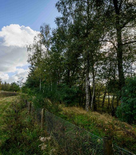 Op zoek naar die ene boom bij het Lonnekermeer die het verschil maakt: 'Het betekent dat het de goede kant op gaat'