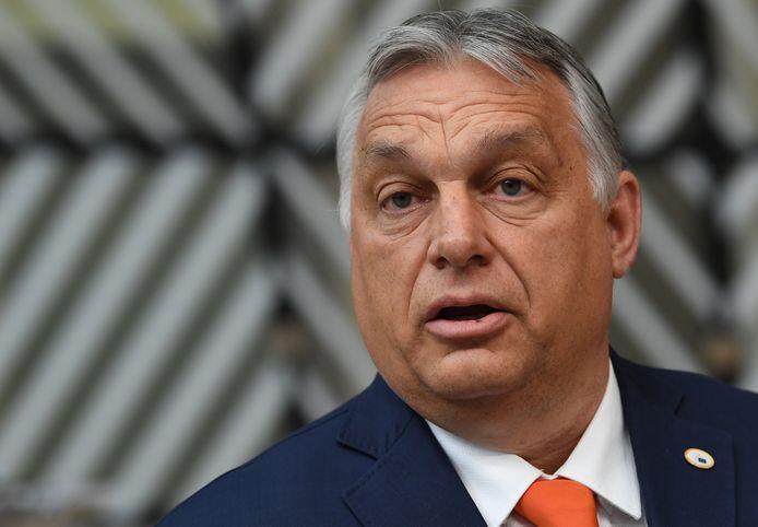 De Hongaarse premier Viktor Orban pareerde de kritiek op zijn anti-homobeleid bij aankomst in Brussel