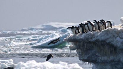 Bijna -100 graden op de Zuidpool