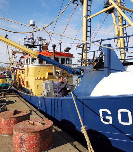 De toegang tot de Stellendamse haven verzandt en vissersschepen wijken uit: 'Wat zijn we zonder vis?'