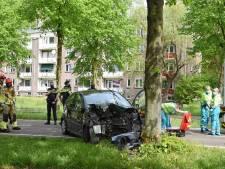 Vrouw gewond bij botsing tegen boom in Tilburg