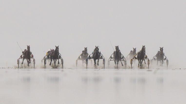 Het is vechten om de koppositie tijdens de Duhner Wattrennen, een traditionele paardenrace op het wad van het Duitse Duhnen, gelegen aan de Noordzeekust van Nedersaksen. De race wordt al sinds 1902 gehouden. Vorig jaar ging het festijn vanwege corona niet door. Beeld AP