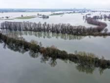 Hoge waterstanden en de Biesbosch: een onafscheidelijk duo