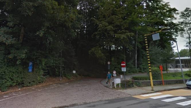 """Eeuwenoude bomen moeten gekapt worden in Scheldepark: """"Stabiliteit en veiligheid niet meer gegarandeerd"""""""
