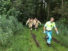 Mountainbiker zwaargewond na val diep in de Brabantse bossen